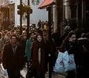 winkelstraat - snippet.jpg